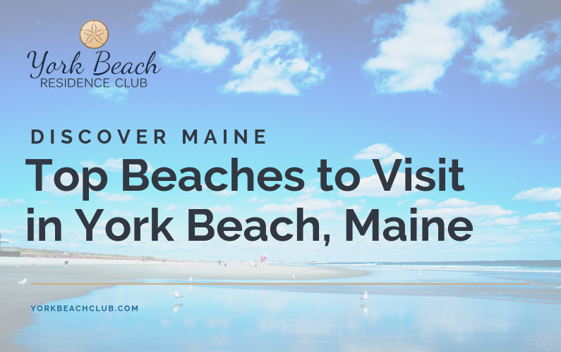 Top Beaches to Visit in York Beach, Maine