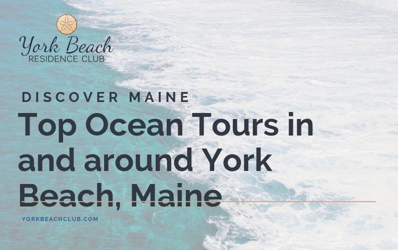 Top Ocean Tours in York Beach, Maine